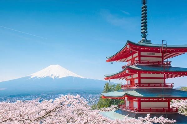 Nature - Circuit Immersion en Terres Japonaises Tokyo Japon