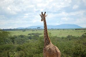 Kenya-Nairobi, Circuit 1ERS REGARDS KENYA