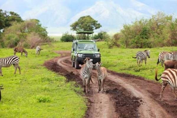 (fictif) - Circuit Premier Regard Kenya Nairobi Kenya