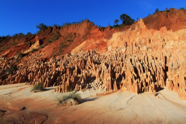 Nature - Circuit Madagascar Solidaire en Terre Malgache Antananarivo Madagascar