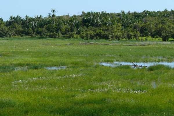 Nature - Mer Emeraude & Tsingy Rouges 3* Nosy Be Madagascar
