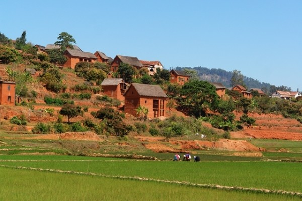 (fictif) - Combiné circuit et hôtel Splendeurs De Madagascar & Extension Ile Maurice Tamatave Madagascar