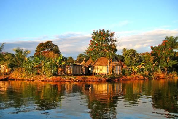Nature - Circuit Splendeurs de Madagascar Tamatave Madagascar