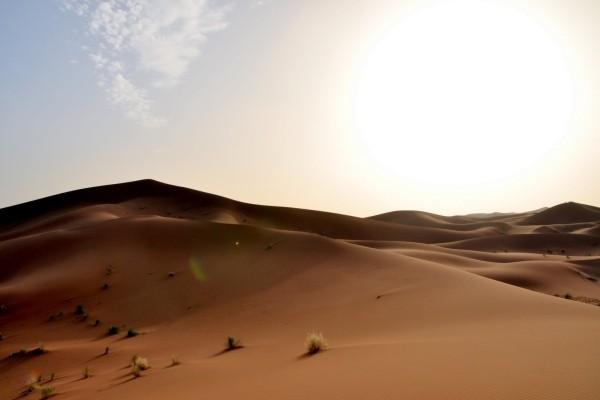 Nature - Oasis en véhicule tout terrain Marrakech Maroc