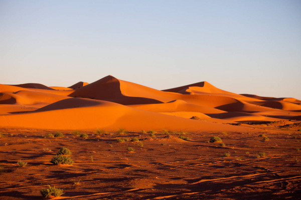 Nature - Circuit FRAM Grand Tour du Maroc Marrakech Maroc