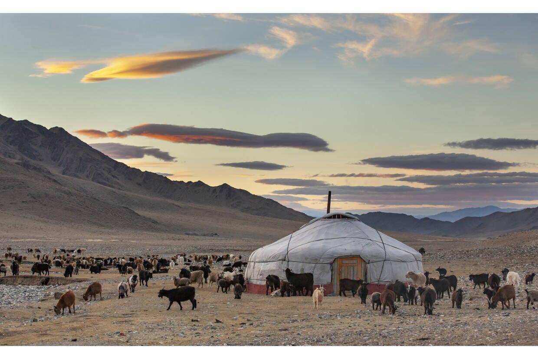 Nature - Circuit Confidentiel Mongolie Oulan Bator Mongolie