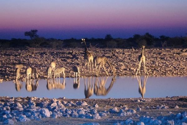 Nature - Circuit Couleurs de Namibie et Fish River Canyon 3* Windhoek Namibie