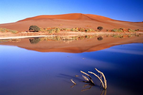 Nature - Circuit Les Incontournables de la Namibie : entre Désert et Safari