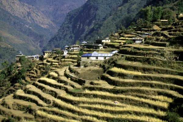 (fictif) - Circuit Confidentiel Népal Kathmandou Nepal