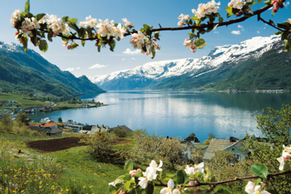 circuit indispensable terre des fjords norvege d s 950 opodo. Black Bedroom Furniture Sets. Home Design Ideas