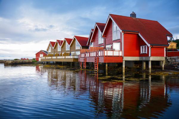 Nature - Circuit Découverte de la Scandinavie Oslo Norvege