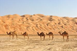 Oman-Mascate, Circuit Magie du Sultanat d'Oman