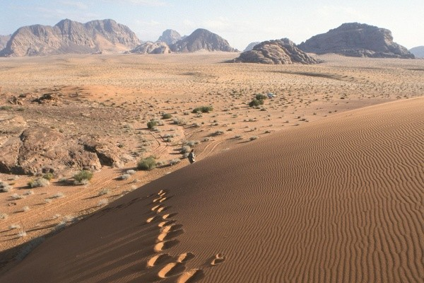 Nature - Circuit Paysages d'Oman 4* Mascate Oman
