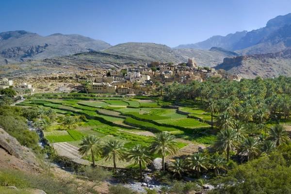 Nature - Circuit Splendeurs d'Oman et des Emirats Mascate Oman