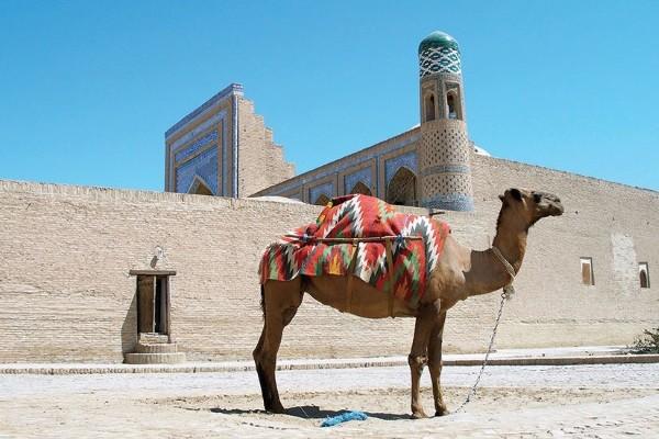 (fictif) - Circuit La Route de la Soie d'Ourguentch à Tachkent Ourguentch Ouzbekistan