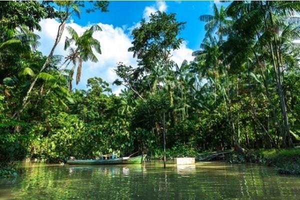 Nature - Circuit Splendeurs du Pérou & Extension Amazonie