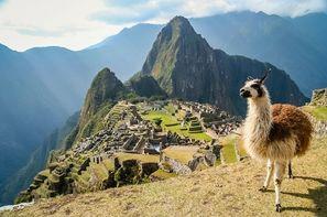 Vacances Lima: Circuit Pérou et Bolivie, Terres des Incas