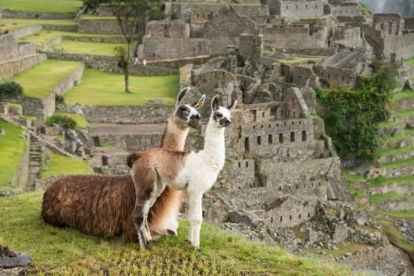 Nature - Circuit Magie du Pérou Lima Perou