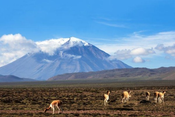 Nature - Circuit Pérou, sentiers andins 3* Lima Perou