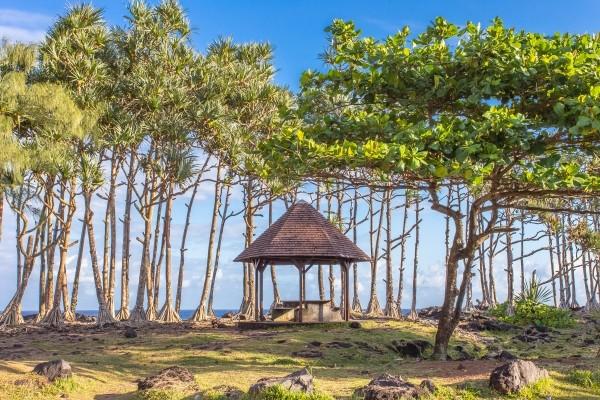 Nature - Combiné circuit et hôtel Beautés de la Réunion Saint Denis Reunion