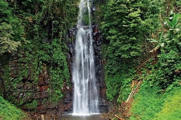 Nature - Circuit Saveurs et couleurs de Sao Tomé Sao Tome Sao Tome