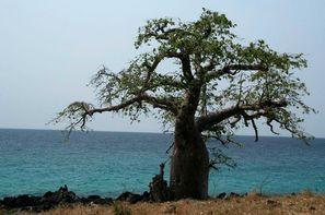 Vacances Sao Tome: Circuit Saveurs et couleurs de Sao Tome