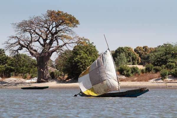 Embarcation de pêcheur dans le Saloum - Merveilles de la Mangrove + Extension Bougainvillées