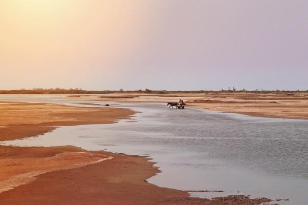 Nature - Circuit Découverte du Senegal Dakar Senegal