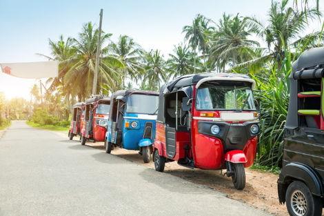 Sri Lanka-Circuit Sri Lanka Traditionnel
