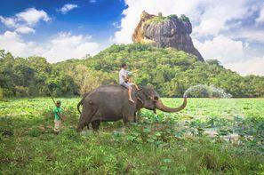 Vacances Colombo: Circuit Indispensable Sri Lanka