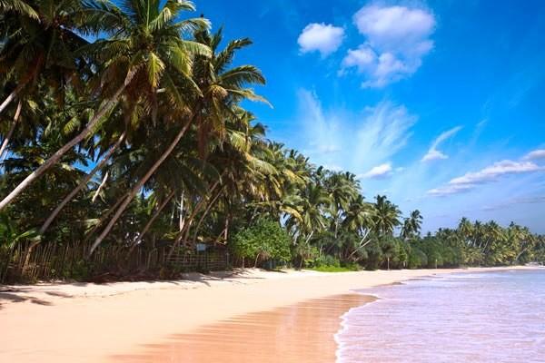 Plage - Trésors & plages du Sri Lanka + extension balnéaire