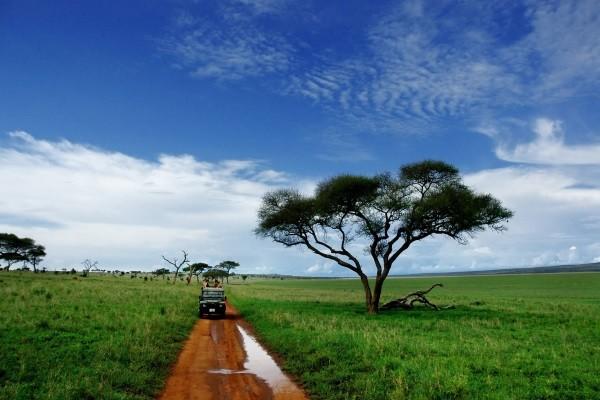 (fictif) - Circuit Merveilles de Tanzanie Kilimanjaro Tanzanie
