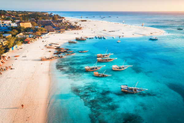 Plage - Circuit Zanzibar : entre nature, senteurs et plages au Framissima Paje Palms Beach 4* sup Zanzibar Tanzanie