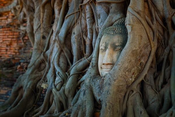 Monument - Les Essentiels de la Thaïlande & farniente au Punnpreeda Beach Resort Samui 3*Sup Koh Samui Thailande