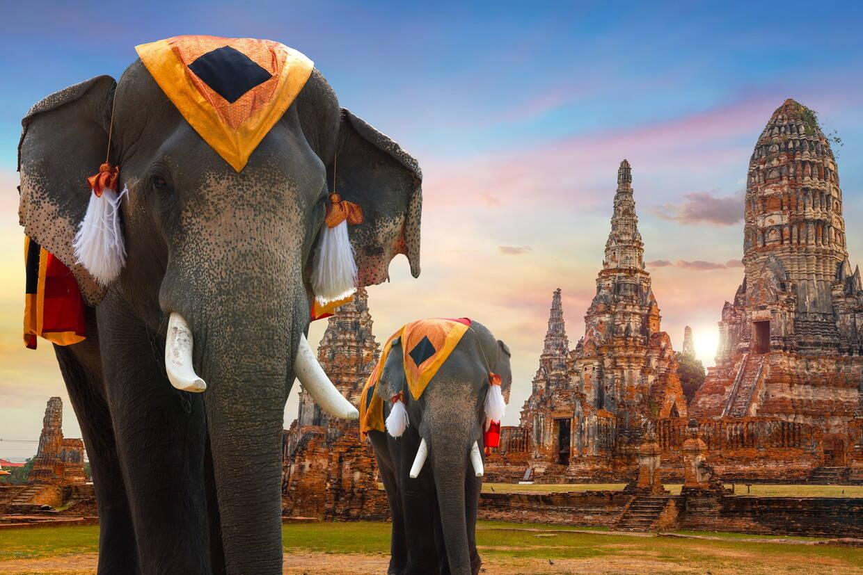 Monument - Les Essentiels de la Thaïlande & farniente à Koh Samui au Samui Palm Beach 4* Koh Samui Thailande