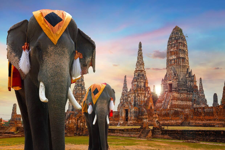 Nature - Circuit Confidentiel Thaïlande Bangkok Thailande