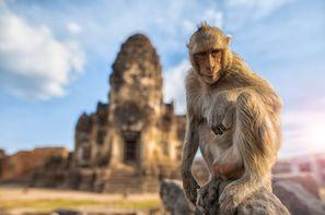 Vacances Koh Samui: Circuit Les Essentiels de la Thaïlande & farniente à Koh Samui au Celes Beachfront