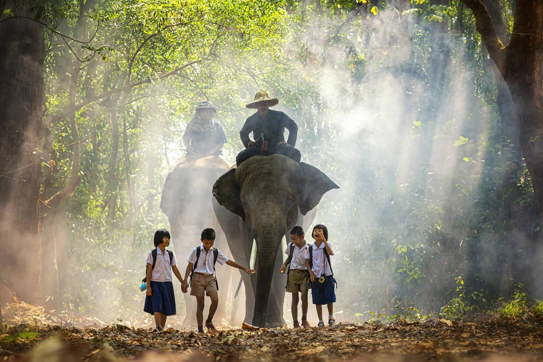 Nature - Les Essentiels de la Thaïlande & farniente à Phuket au Deevana Patong Resort & Spa 4* Phuket Thailande