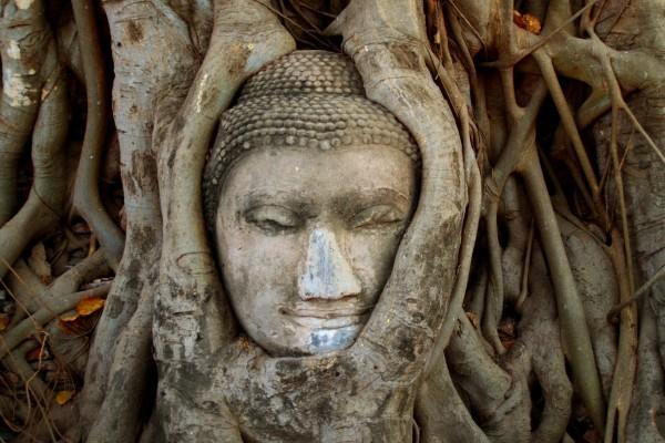 Nature - Circuit Premier Regard Thaïlande 3* Bangkok Thailande