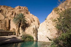 Tunisie-Djerba, Circuit De Djerba à Tozeur : entre plage et désert