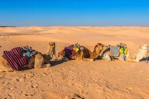 Vacances Djerba: Circuit Aventure 4X4 Entre Oasis Et Ksour