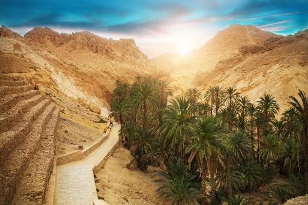 Nature - Circuit Trésors de Tunisie 4* Monastir Tunisie