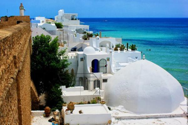 Ville - Circuit La diversité du paysage tunisien 4* Tunis Tunisie