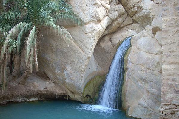 Nature - Circuit Découverte de la Tunisie 5* Tunis Tunisie