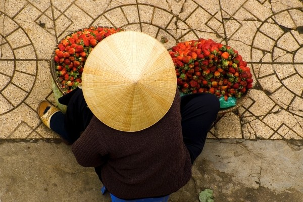 (fictif) - Circuit Vietnam Saveurs de la Baie d'Halong 3* Hanoi Vietnam