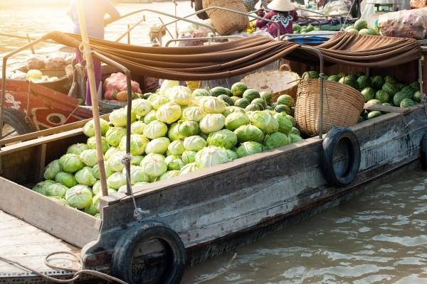 Bateau - Circuit Des Rizières de Mai Chau à Halong Hanoi Vietnam