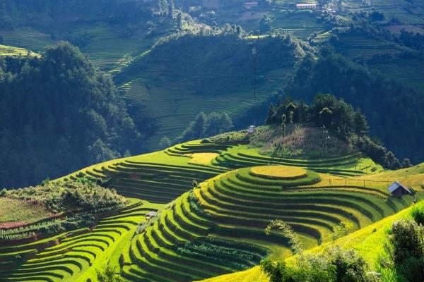 Nature - Circuit Des Rivières de Sapa à la Baie d'Halong Hanoi Vietnam