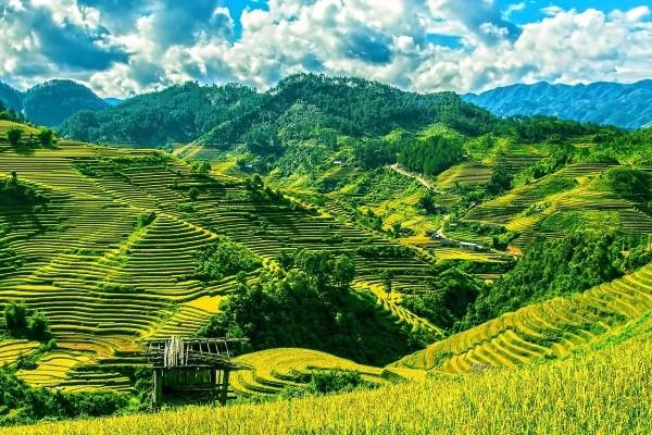 Nature - Circuit Vietnam Terre du Dragon Hanoi Vietnam