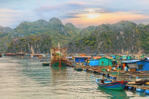 Nature - Circuit Les Inévitables Vietnam Cambodge Insolite