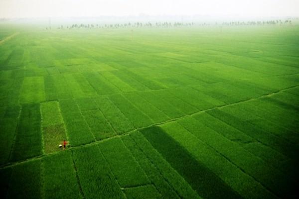 Nature - Circuit Les Incontournables du Vietnam 3* Hanoi Vietnam